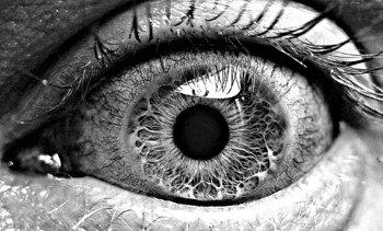 78 Best images about Black and White on Pinterest   Elliott erwitt
