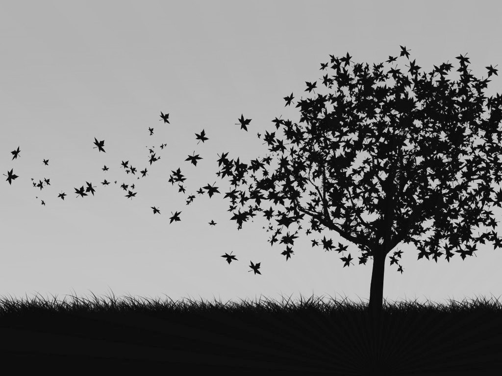Black And White Pc Wallpaper