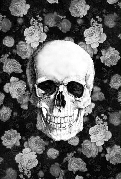 1000+ ideas about Skull Wallpaper on Pinterest | Skull art, Skulls