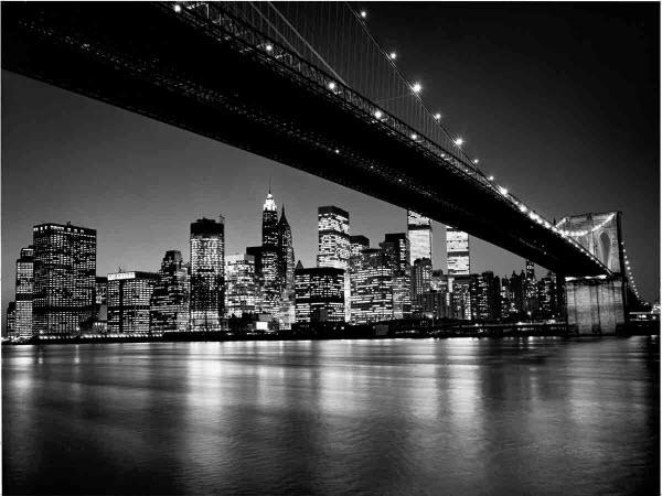 Manhattan Skyline Wall Mural DM119 Black and White - TheMuralStore com
