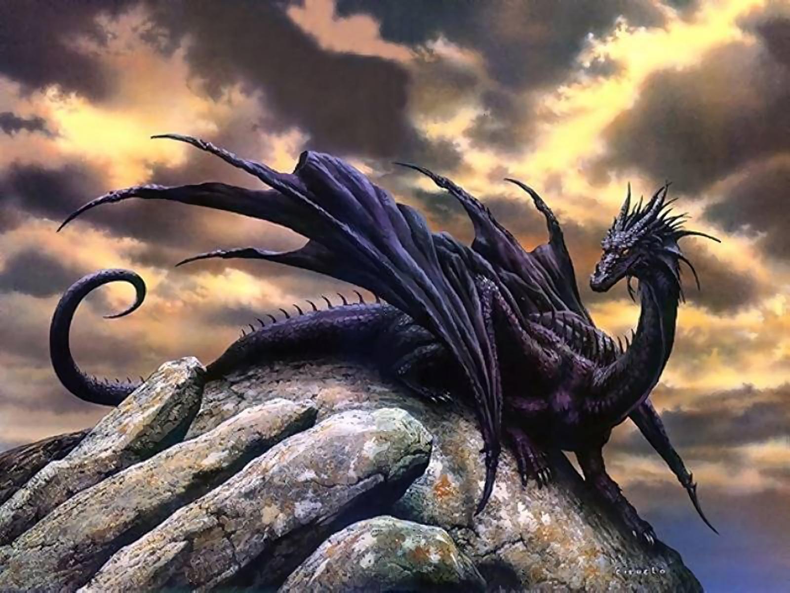 1697 Dragon HD Wallpapers