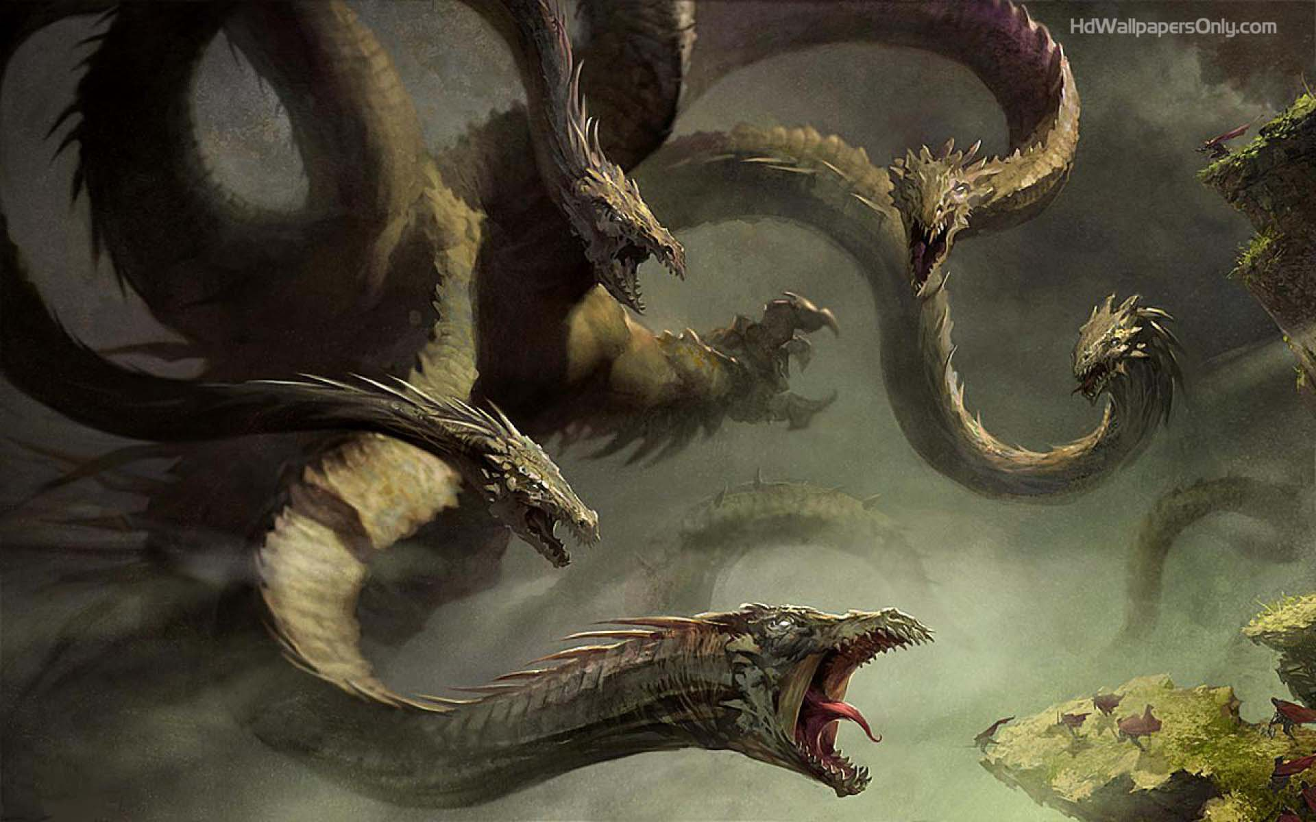 Dragon HD Wallpapers 1080p Group 84
