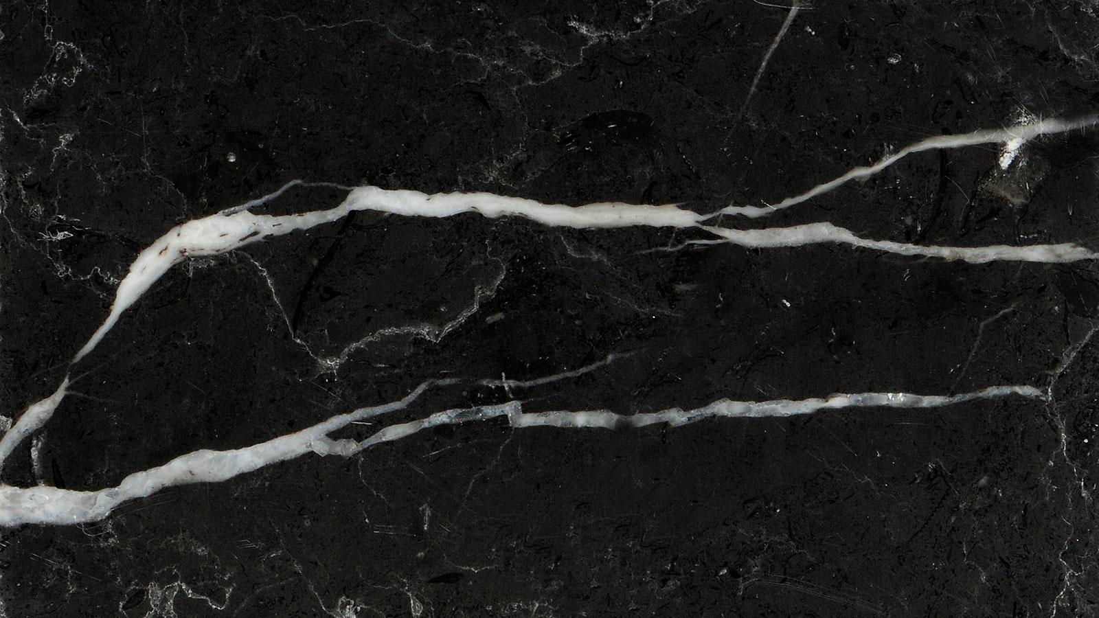 Simple Wallpaper Marble Pinterest - black-marble-wallpaper-14  You Should Have_375741.jpg