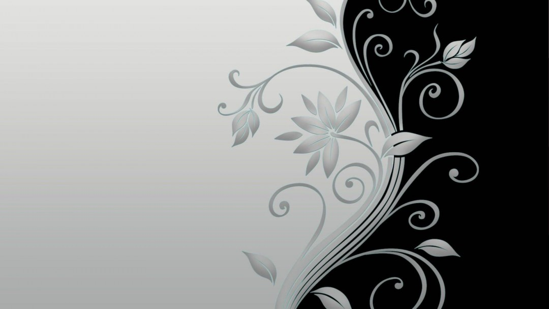 Vector Flower Black and White HD Wallpaper of Vector