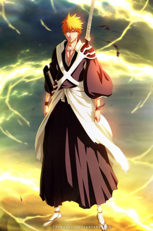 1000+ ideas about Bleach Anime on Pinterest | Bleach, Bleach