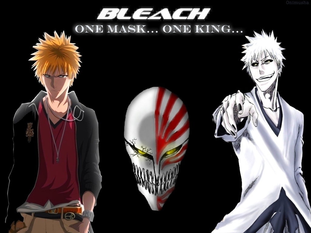 44 units of Bleach Pictures