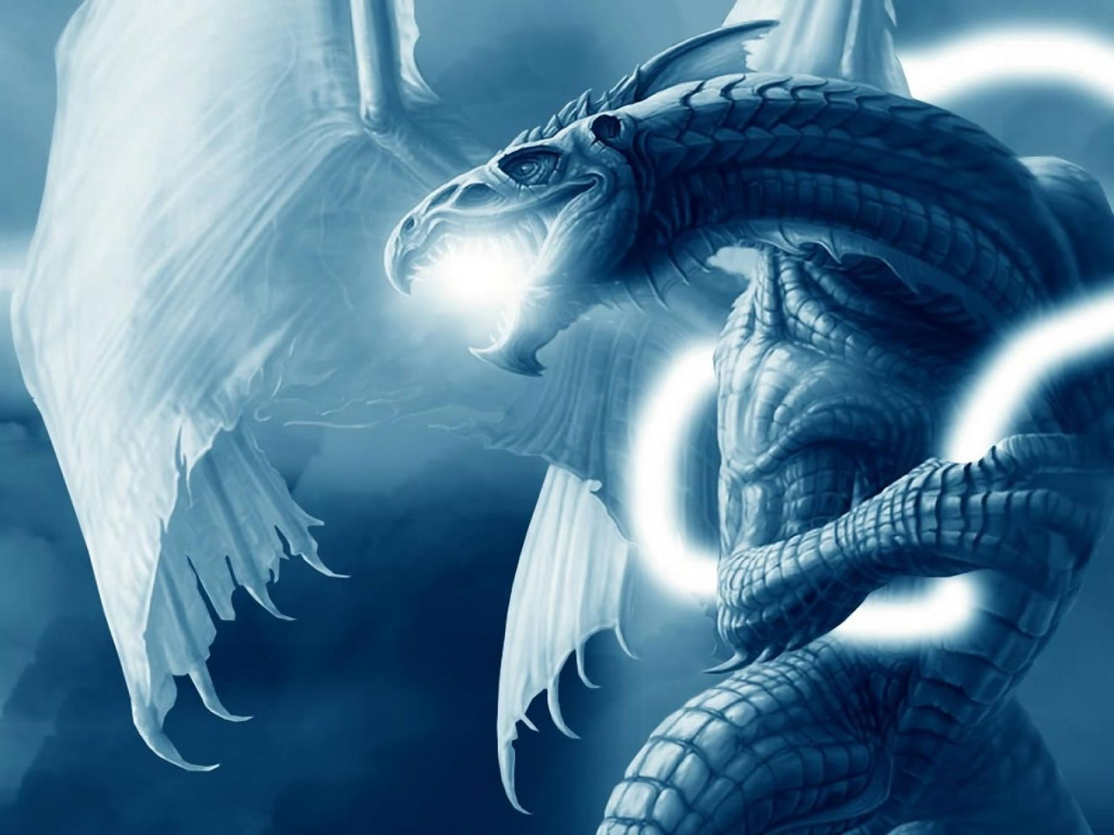Blue Dragon Wallpapers - HD Wallpapers and Pictures | Dragon Art