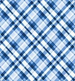 blue plaid | CrackBerry com