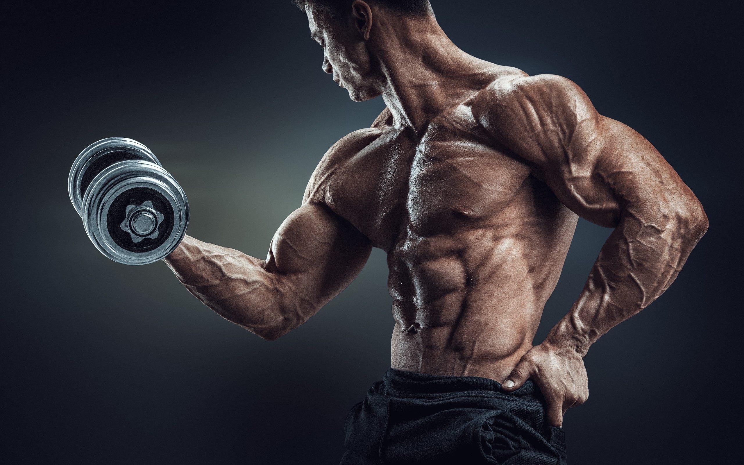 Bodybuilding Wallpaper Sf Wallpaper