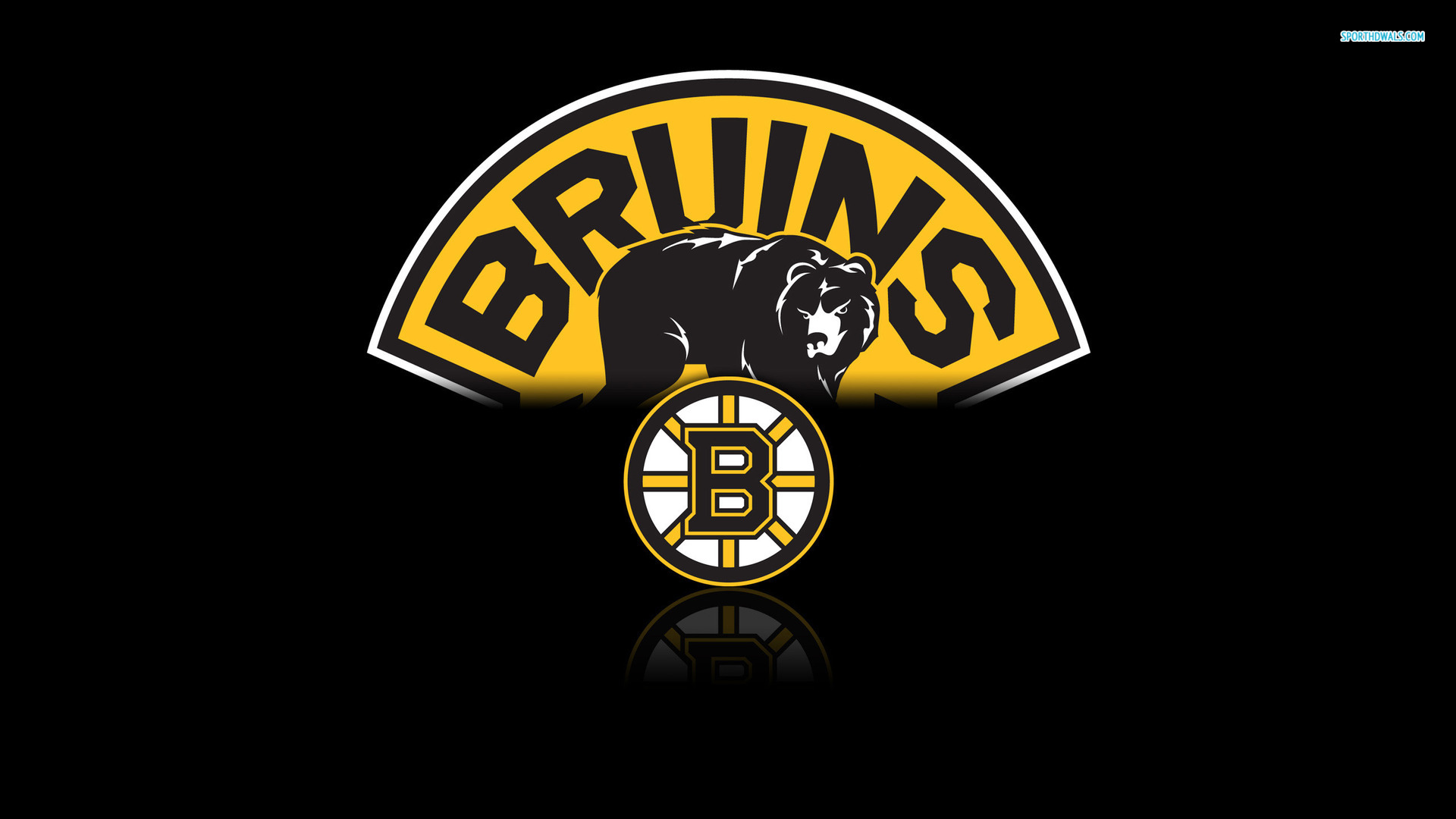 Boston Bruins Wallpapers Group (80+)