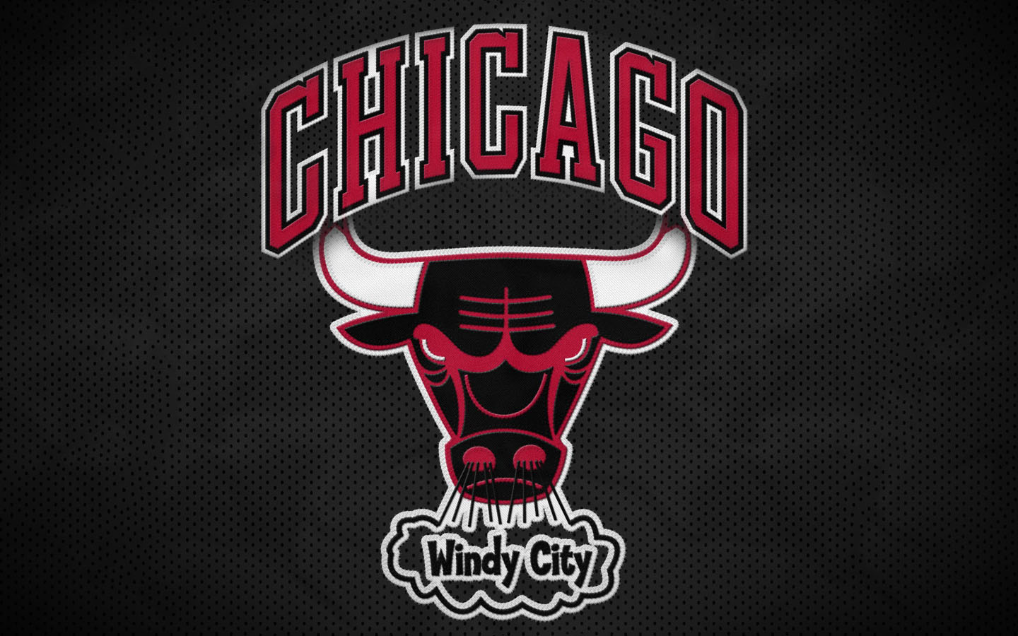 1000+ images about chicago bulls on Pinterest | Logos, Distance