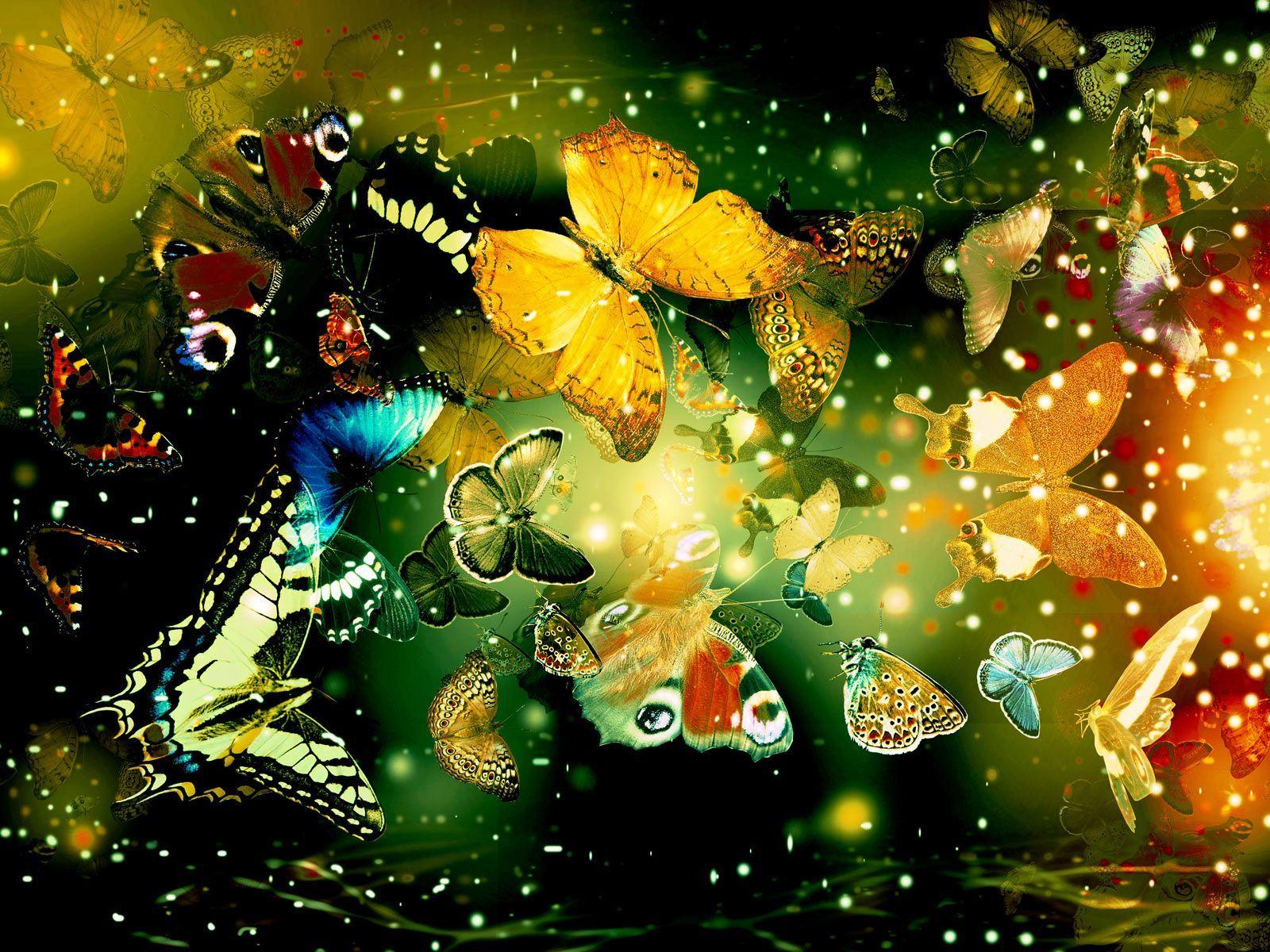 Butterflies Desktop Wallpapers - Wallpaper Cave
