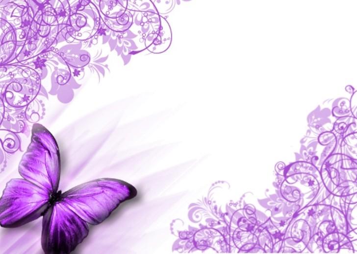 Animated Beautiful Purple Butterflies | Butterflies purple