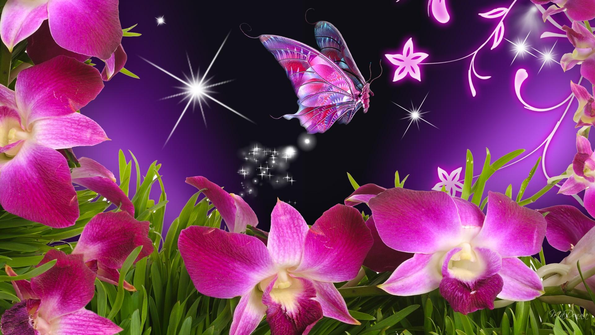 Butterfly and flower wallpaper sf wallpaper butterflies and flowers butterfly flowers orchid purple stars izmirmasajfo