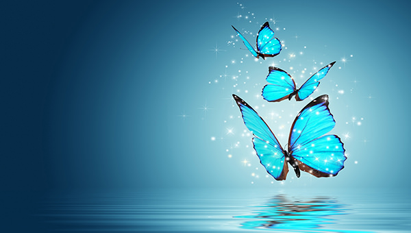 20 Beautiful Free Butterfly Backgrounds | FreeCreatives