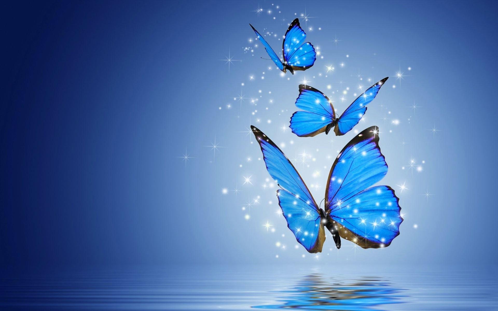 Blue Butterfly Wallpapers Hd ~ Sdeerwallpaper | vishvas