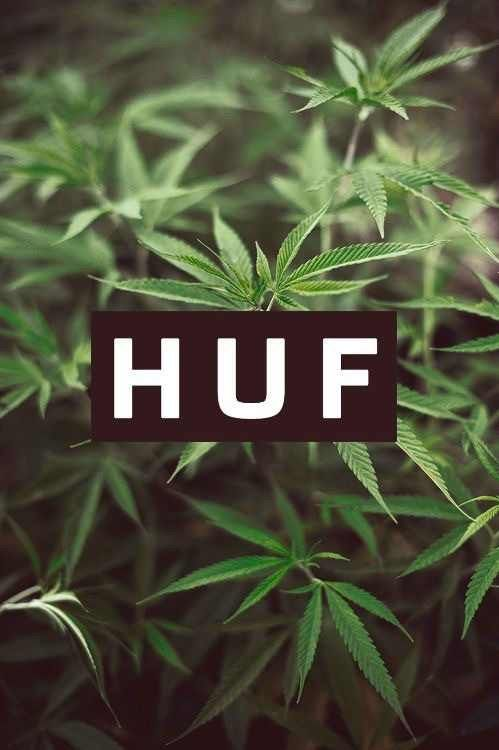 Weed Iphone Wallpaper Sf Wallpaper