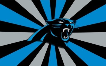 33 Carolina Panthers HD Wallpapers | Backgrounds - Wallpaper Abyss