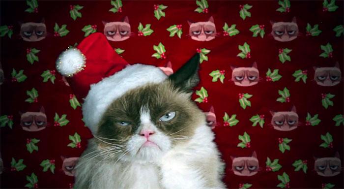 p 992, Grumpy Cat Christmas Wallpaper, Grumpy Cat Christmas