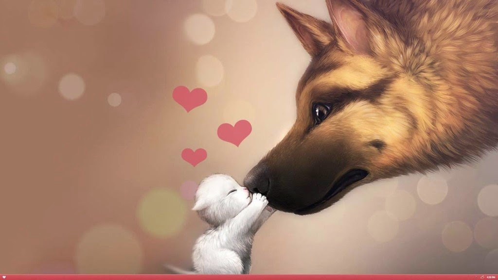Cats and Dogs in Love Pictures for Desktop | Special Cat Lovers