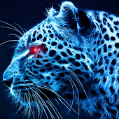 Cheetah Wallpapers - Android Apps on Google Play
