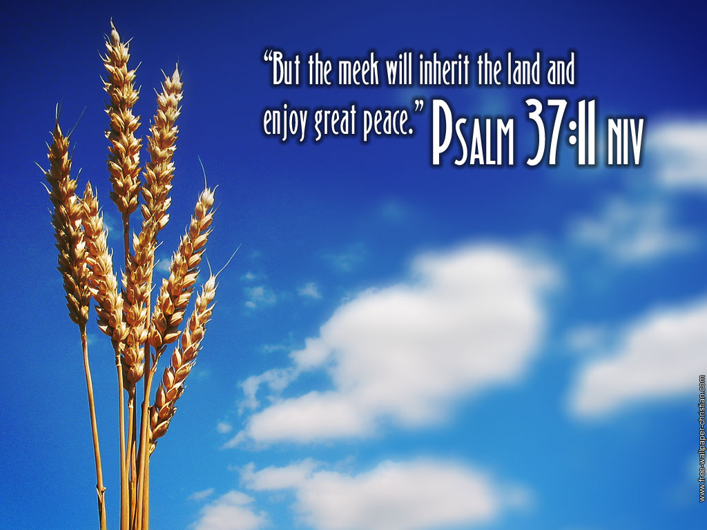 1000+ images about Religion on Pinterest | Christian backgrounds