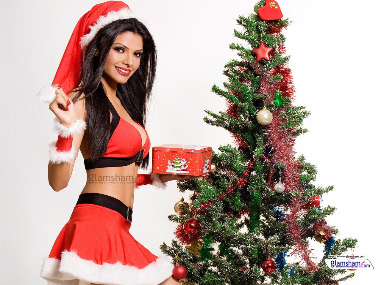 Bollywood babes celebrate Christmas 60563 - Glamsham