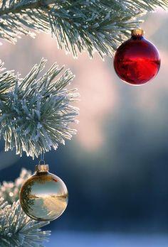 christmasbokehweb Pink Santa Christmas Fine Art Photography Prints