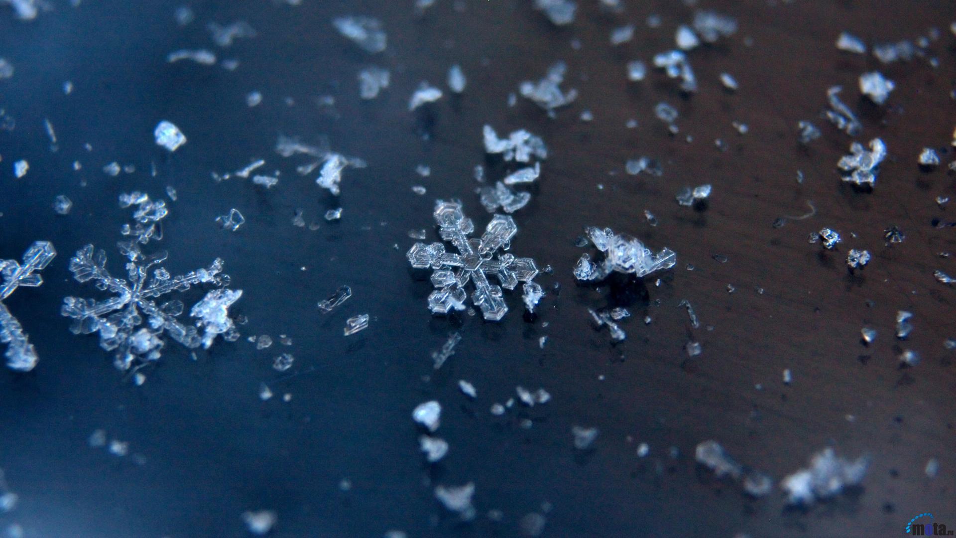 Wallpaper snowflakes