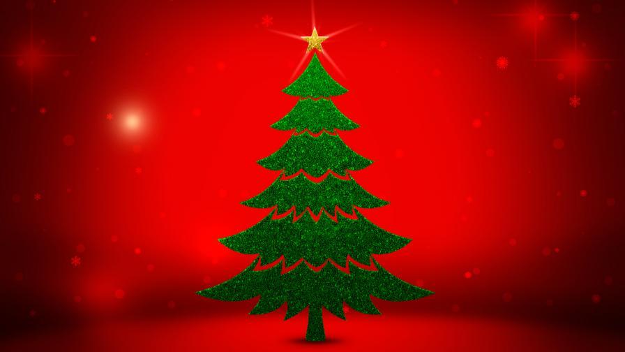 Christmas Trees - Free Christmas Wallpapers