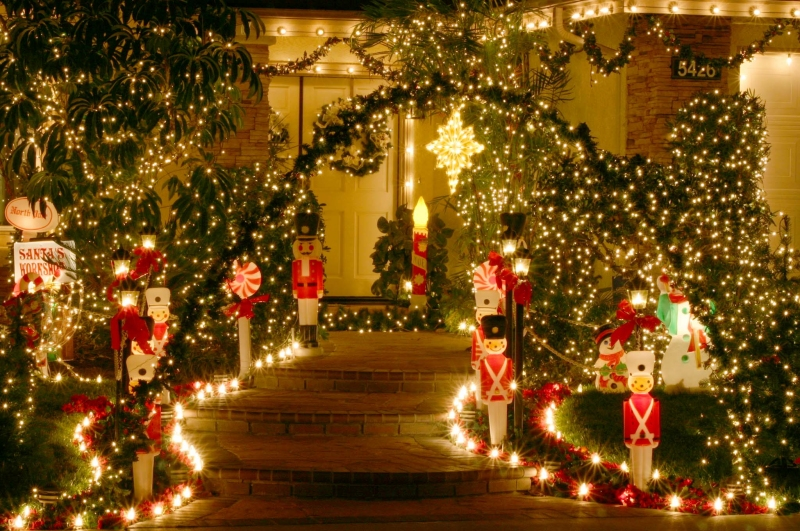 1000+ images about christmas trres on Pinterest | Trees, Christmas