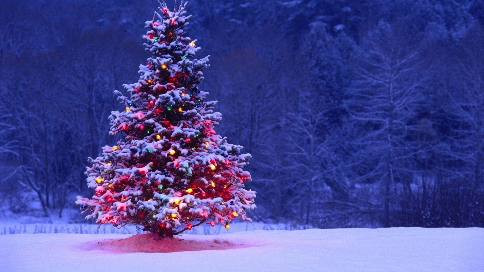 Desktop Backgrounds Christmas Group (85+)