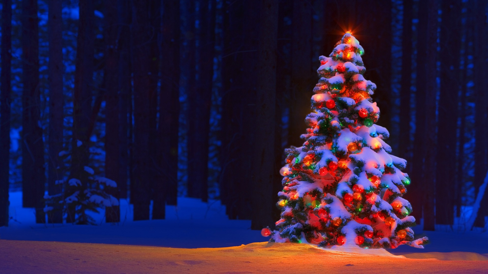 christmas tree snow wallpaper