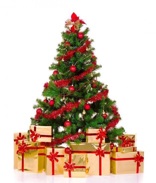 Christmas Tree Hd Wallpaper Sf Wallpaper