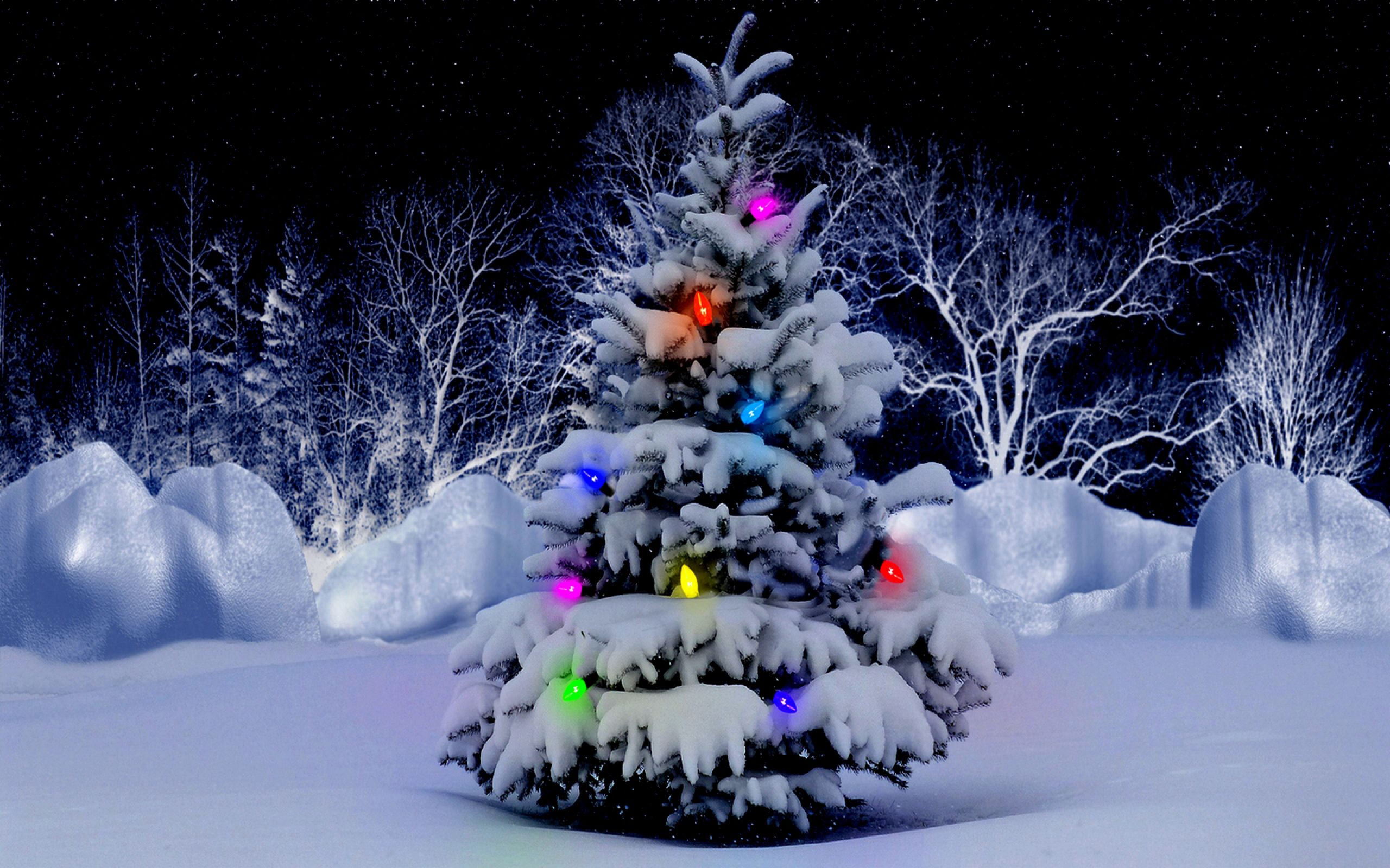 christmas tree desktop wallpaper - drive.cheapusedmotorhome