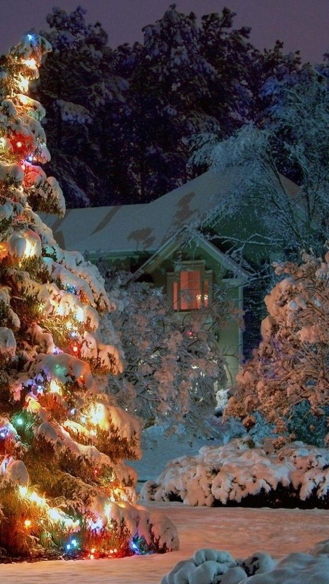 1000+ ideas about Christmas Tree Wallpaper on Pinterest