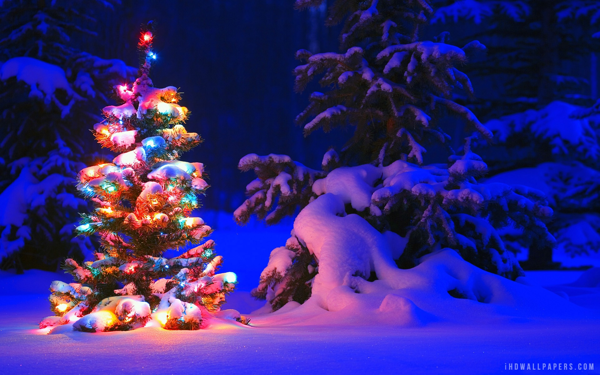 Christmas Tree Snow Wallpaper