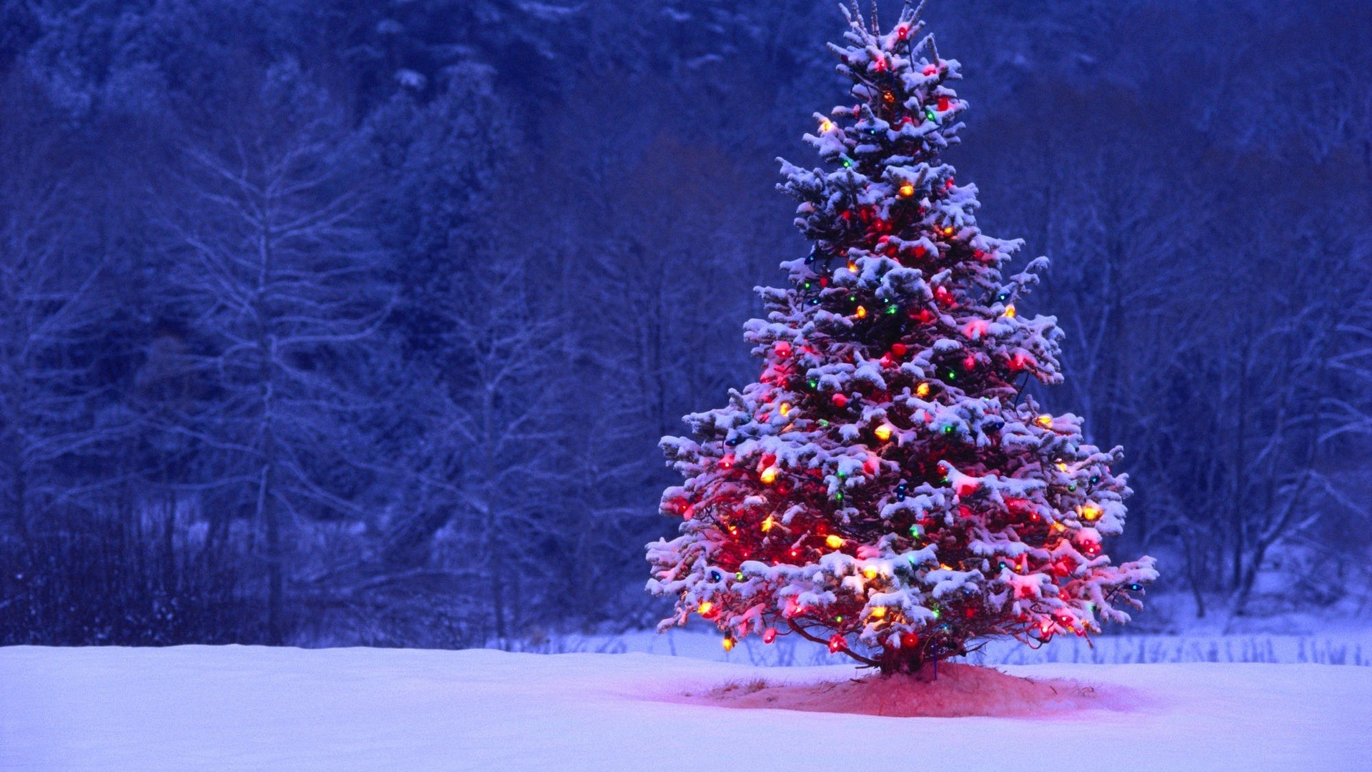 Hd Christmas Desktop Wallpaper Sf Wallpaper