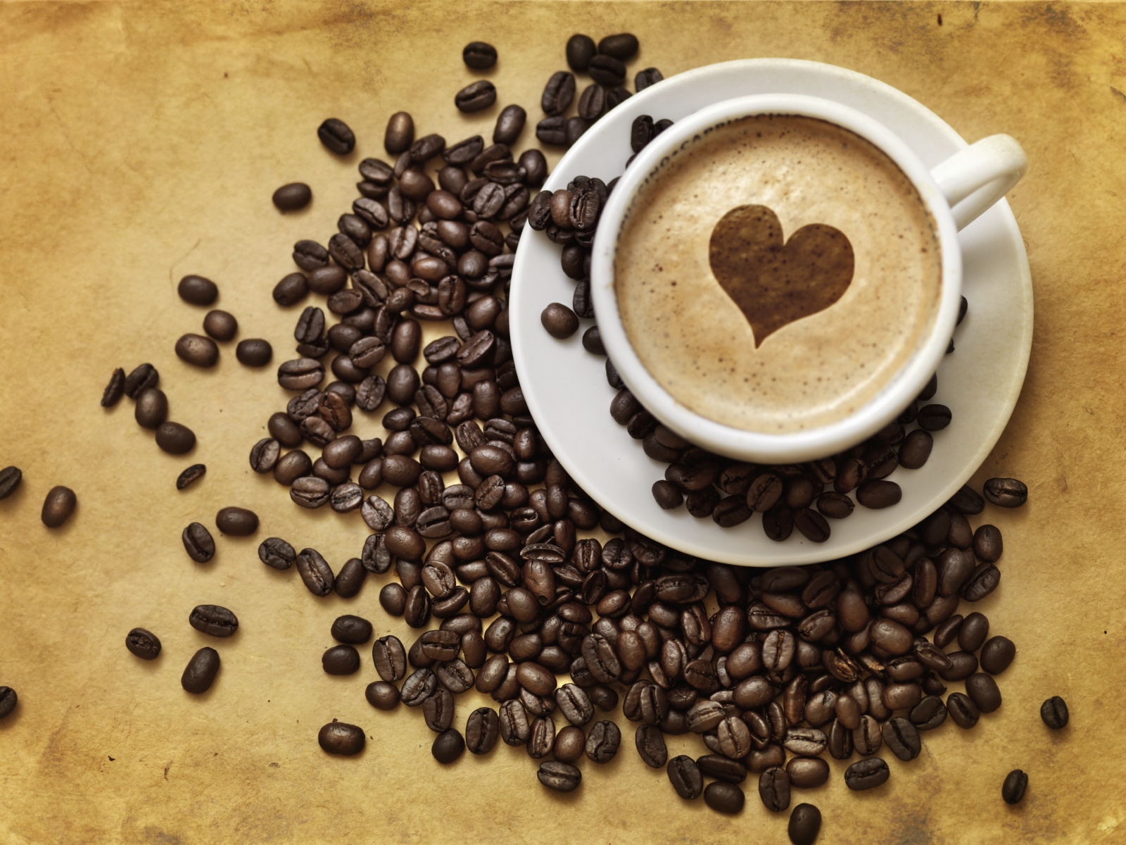 13 Random Facts About Coffee! - Escali Blog