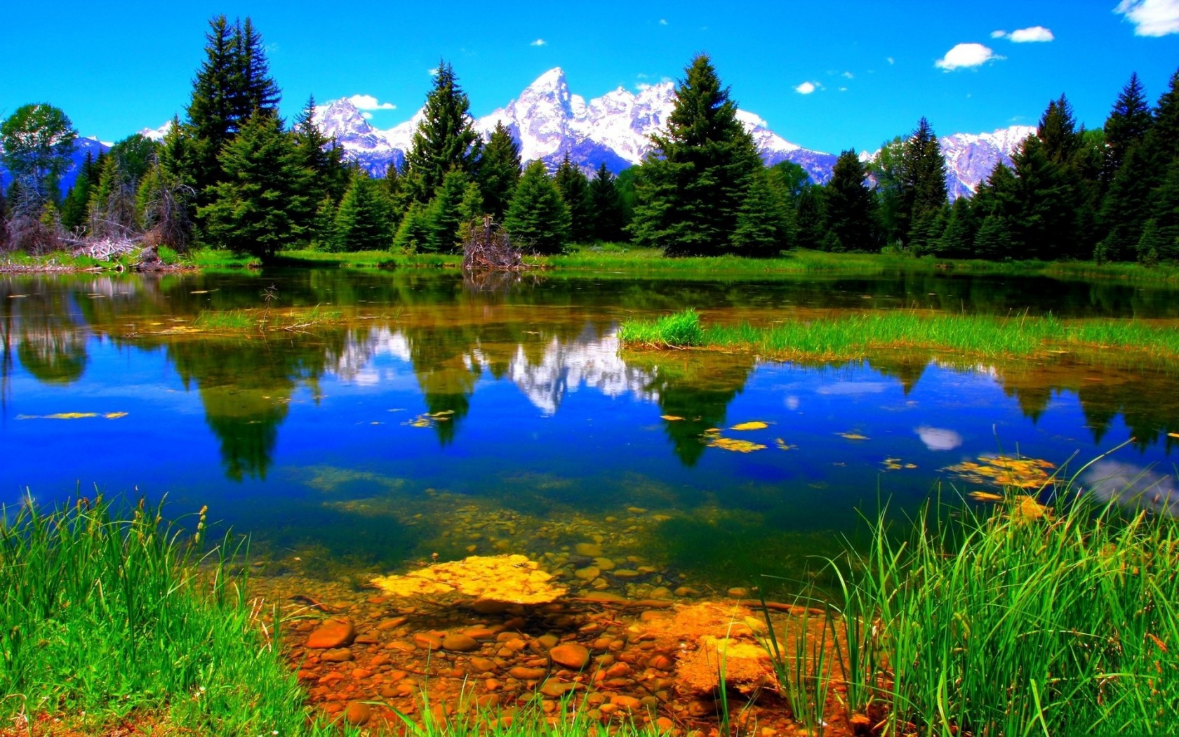Colorful Nature Backgrounds | Best Wallpaper Background