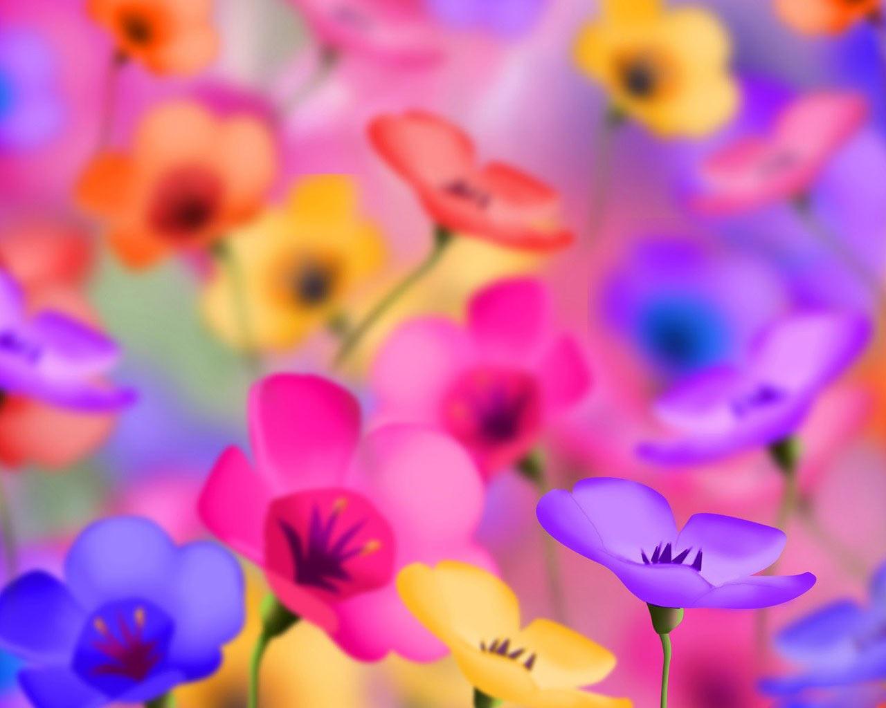 Colorful Wallpapers for Desktop - WallpaperSafari