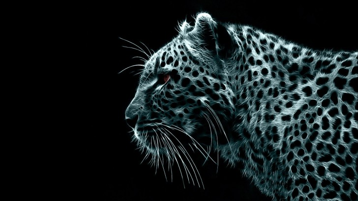 Leopard Cool Backgrounds Wallpapers 8062 - Amazing Wallpaperz