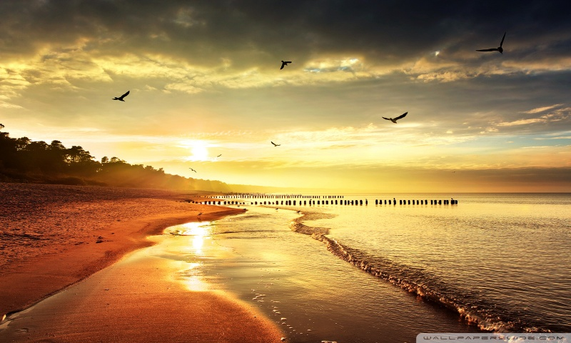 COOL NATURE HD desktop wallpaper : Widescreen : High Definition