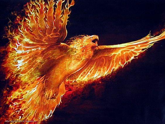 Cool fire Wallpapers | HD Wallpapers Pics | Fire - Ogień