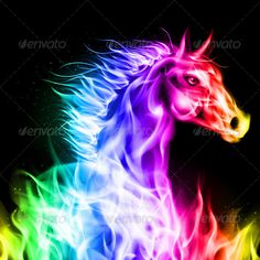 Collection of Cool Horse Backgrounds on HDWallpapers