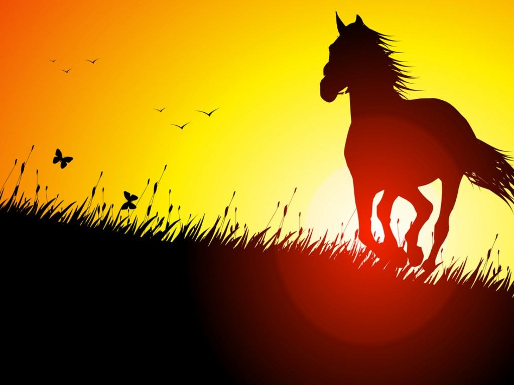 Cool Horse Backgrounds Page 1