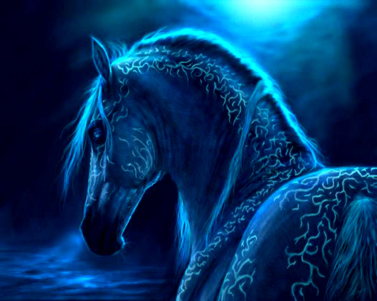 Horse Wallpapers, HQFX Photo