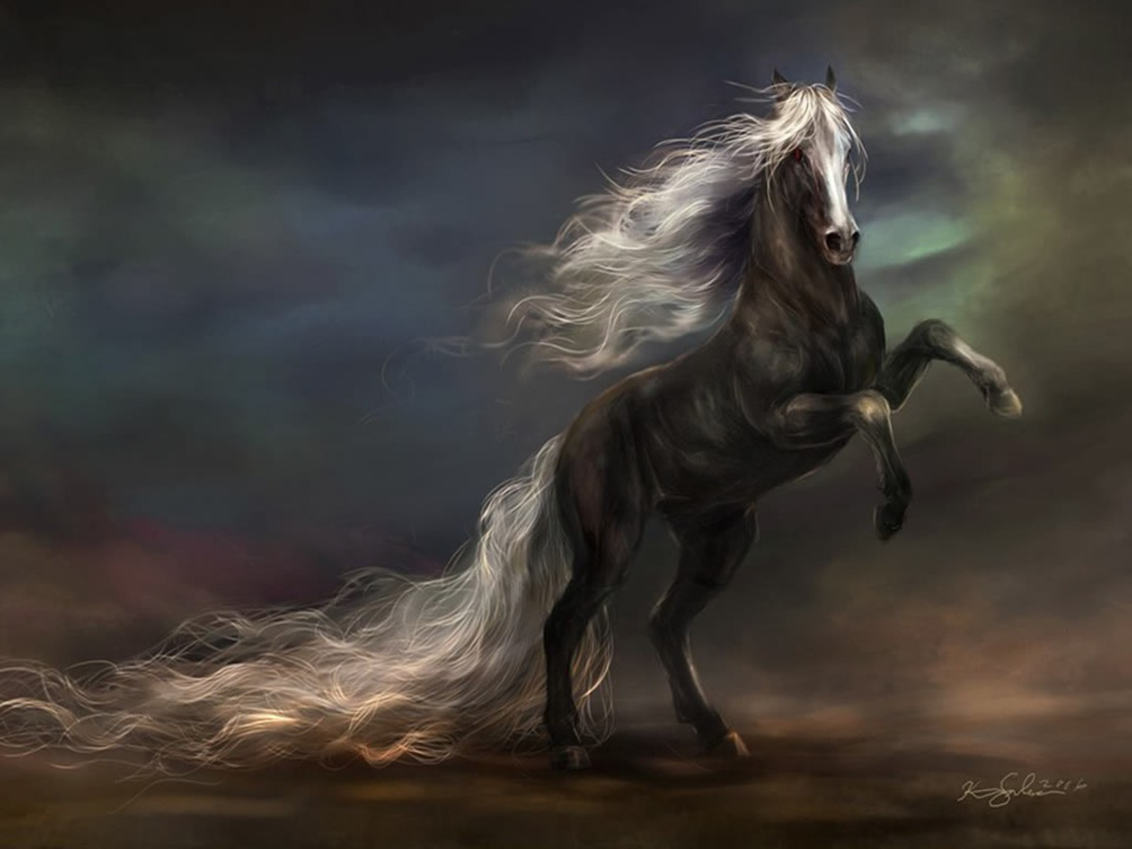 1156 Horse HD Wallpapers | Backgrounds - Wallpaper Abyss