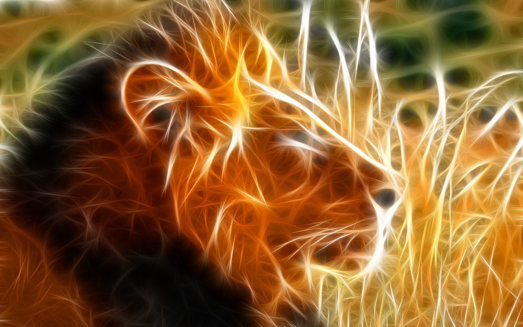 947 Lion HD Wallpapers | Backgrounds - Wallpaper Abyss