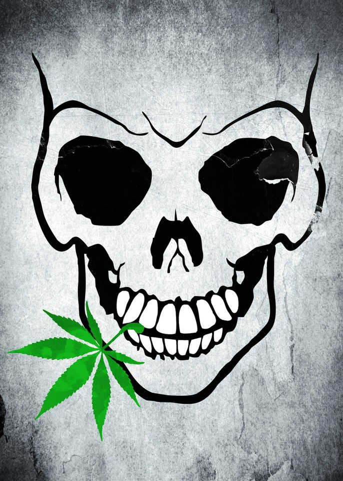 Skull with Weed - Cool Skull with Pot by Denis Marsili | Crated